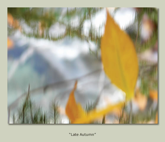 """Late Autumn"""