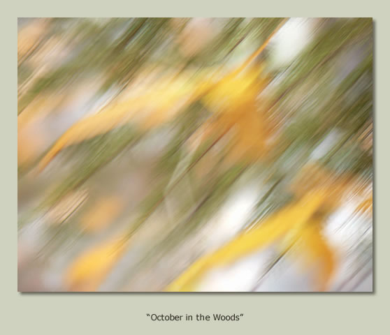 """October in the Woods"""