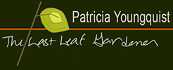 Patricia Youngquist The Last Leaf Gardener