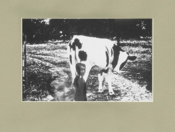 Cow With Children Limited Edition Print