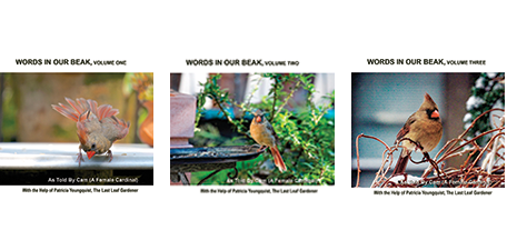 images from the Words In Our Beak photo art book series